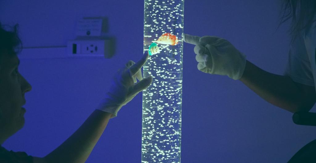 Imagen en la que aparecen dos personas tocando una pecera tubular de luz y colores